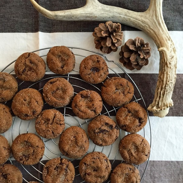 chewy gingerbread and chocolate cookies