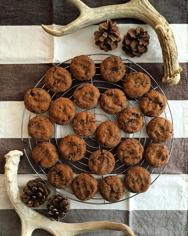 chewy gingerbread chocolate cookies