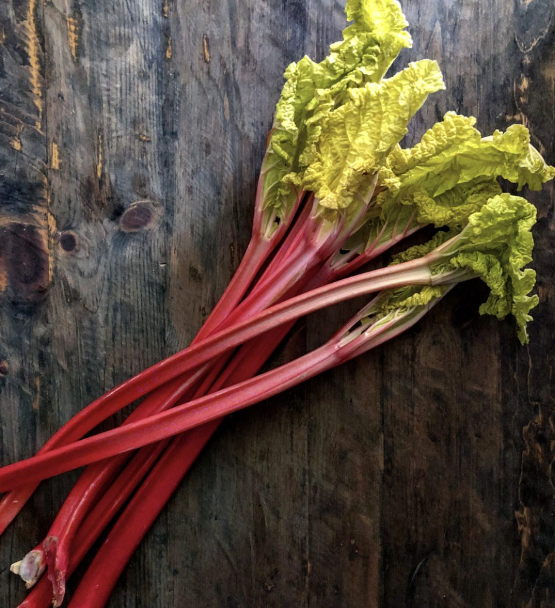 Celebrate Springtime with Rhubarb!