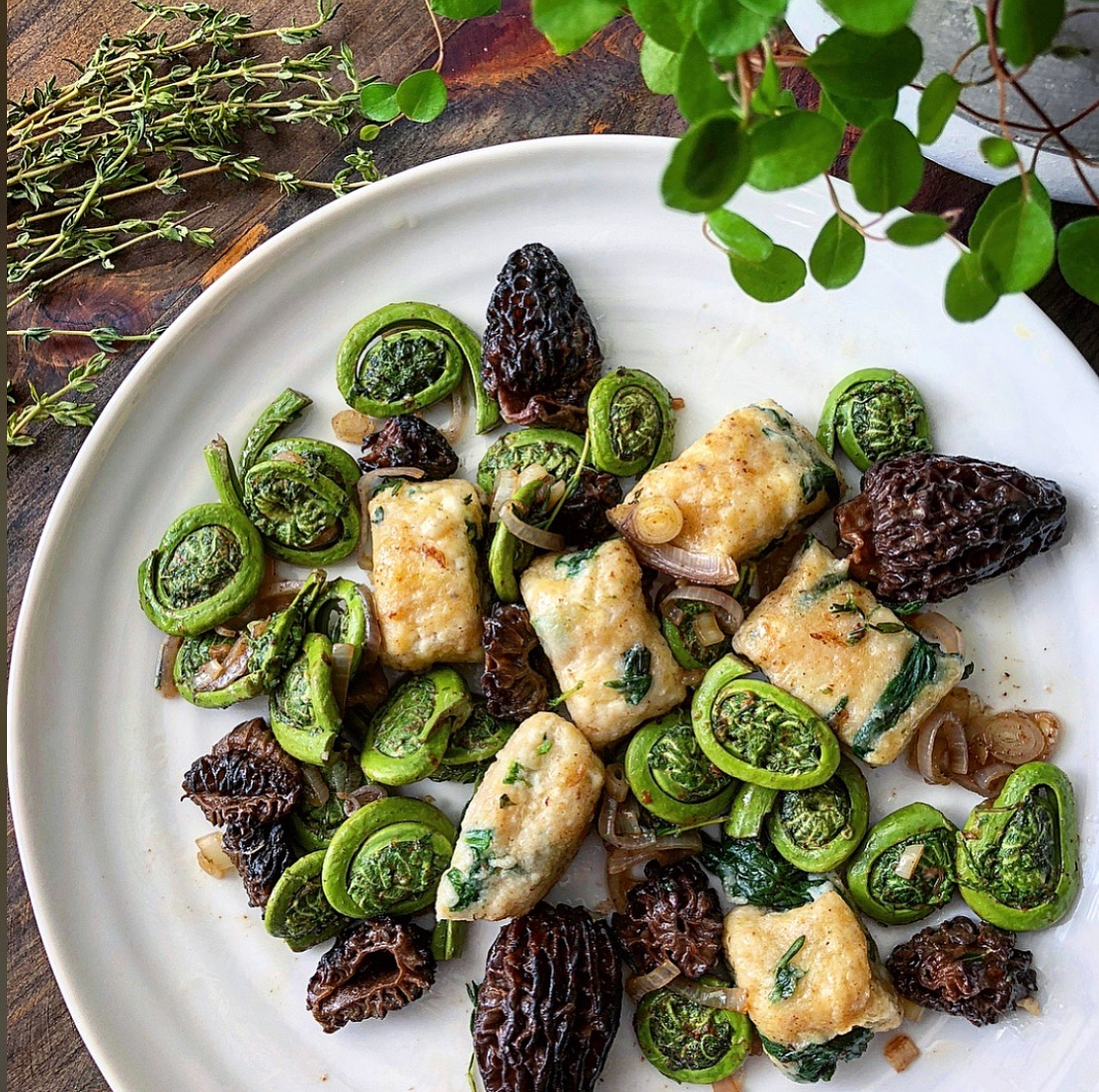 Ramp Gnudi with Fiddleheads and Morels