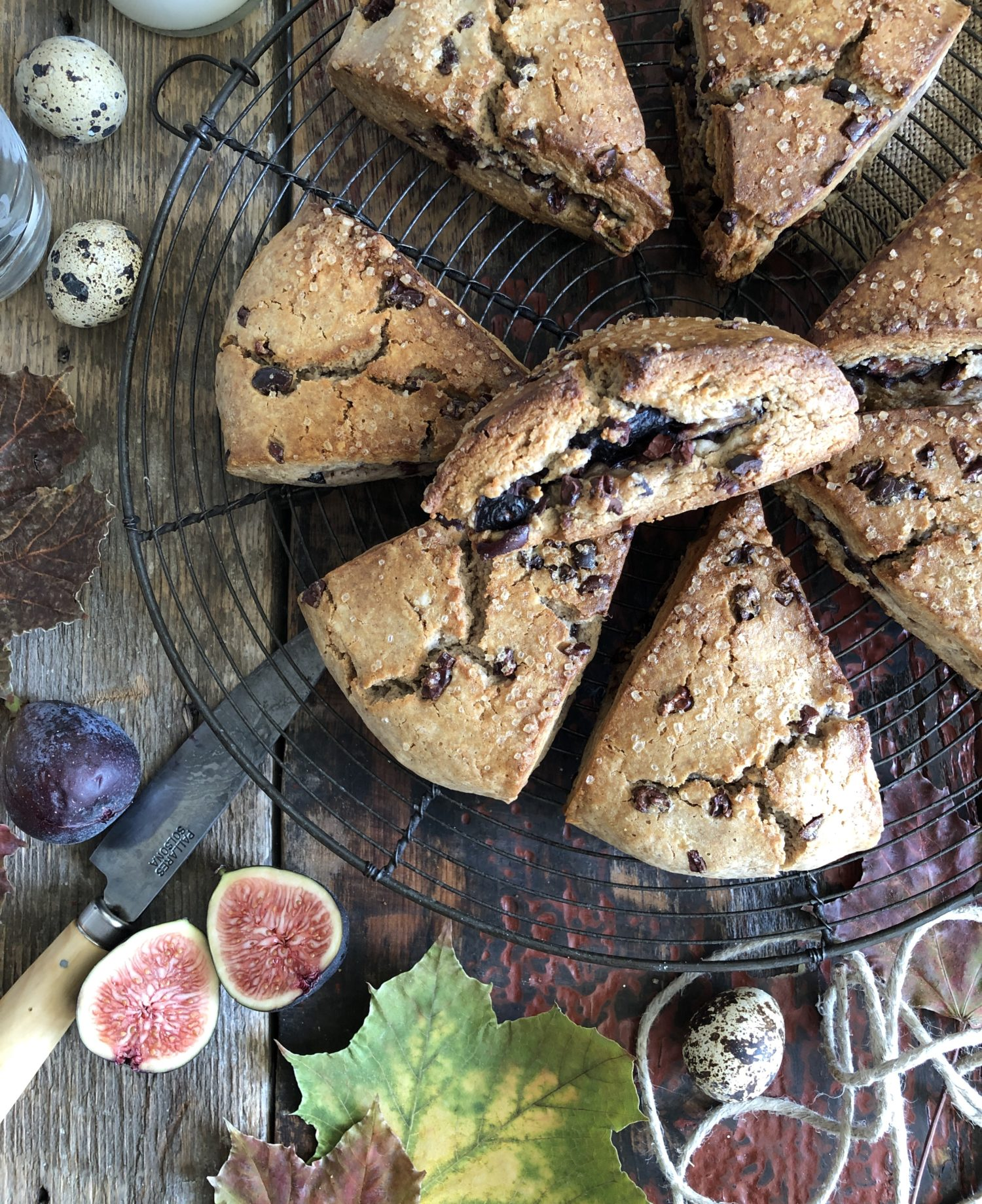 tender fig and cocoa nib chestnut scones