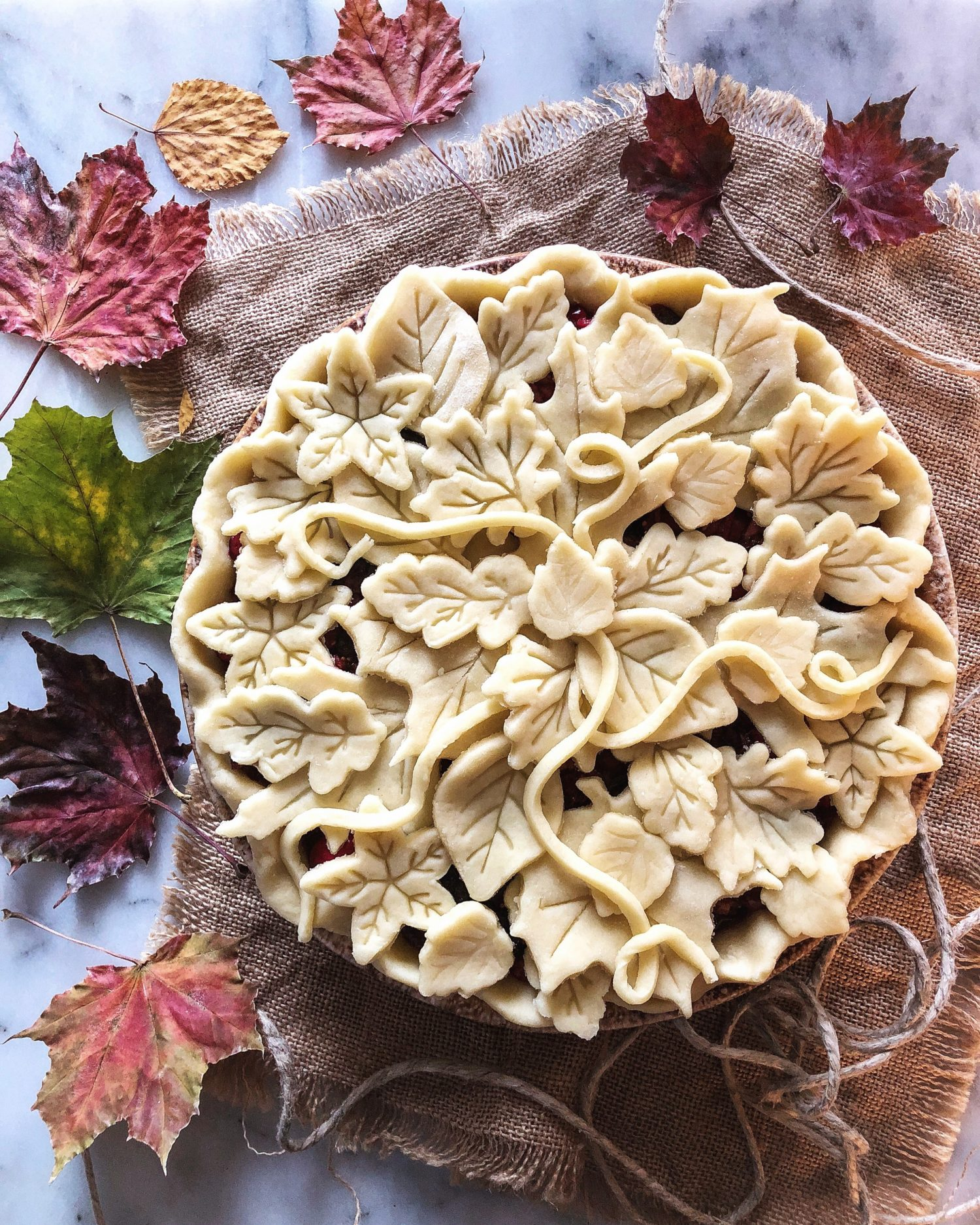 Cranberry Sage PIe with cutouts and tendrils