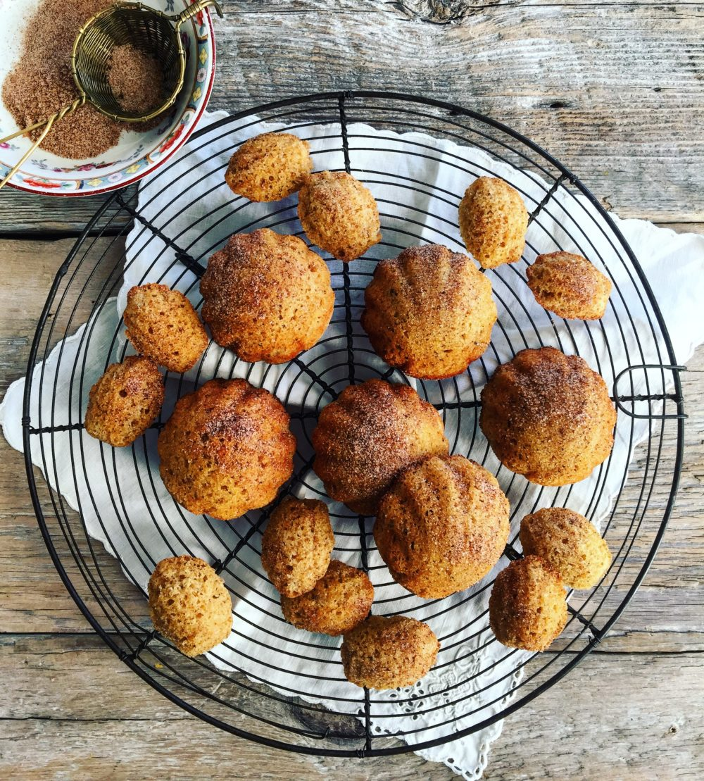 Chestnut Honey and Spice Madeleines