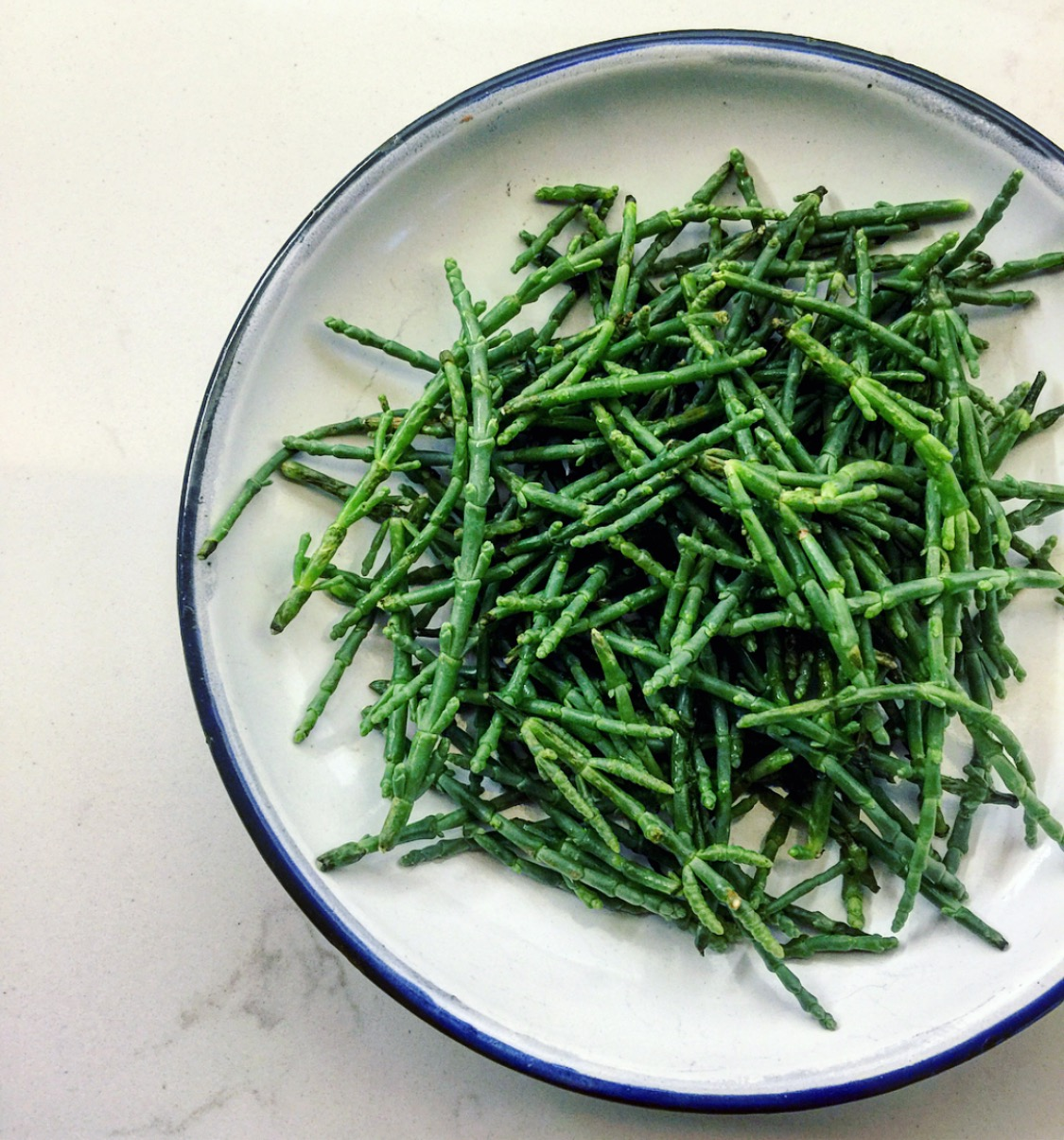 sea asparagus or samphire